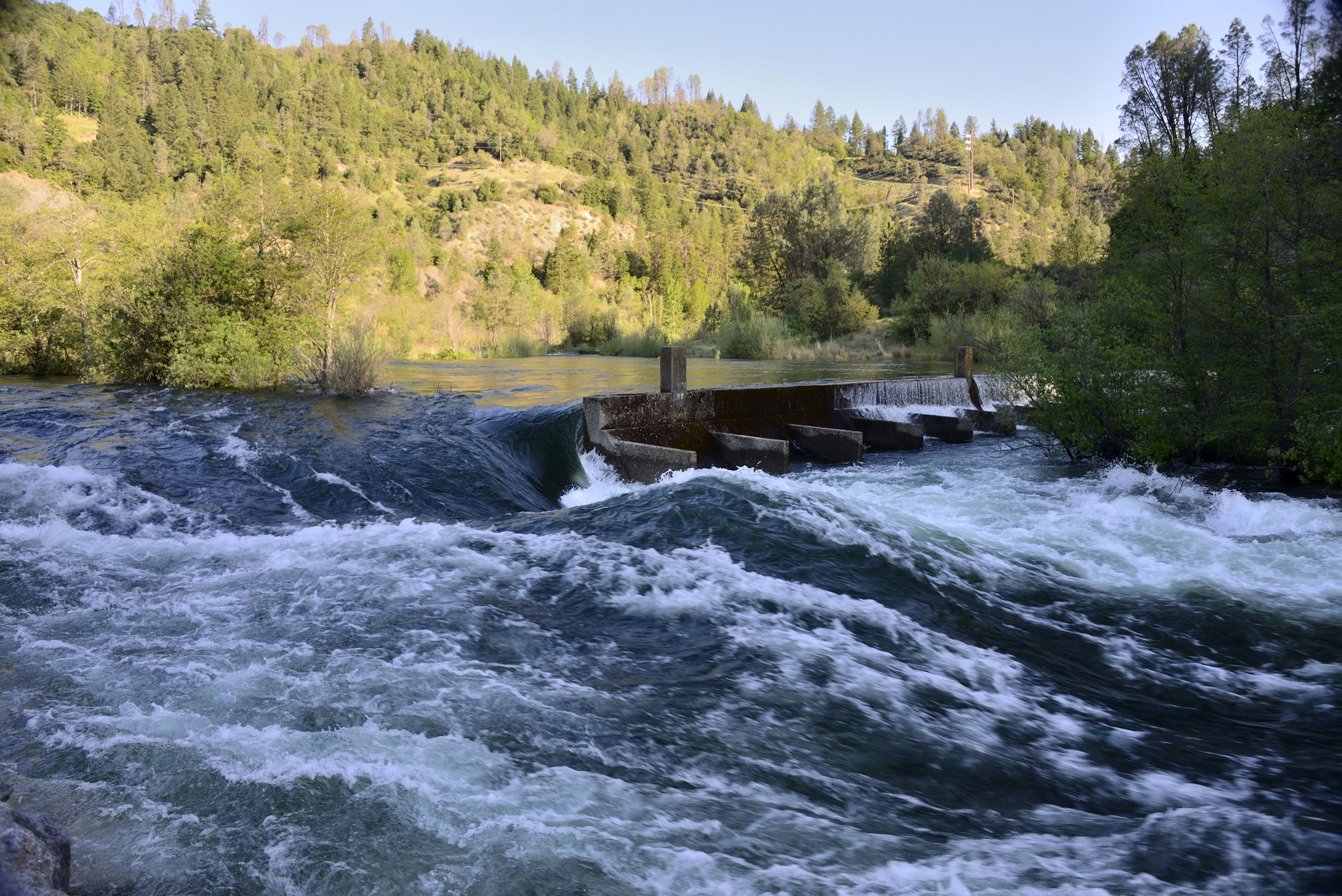 Trinity River flows in the summer of 2014 at the weir near Lewiston, CA. Photo by Kenneth DeCamp