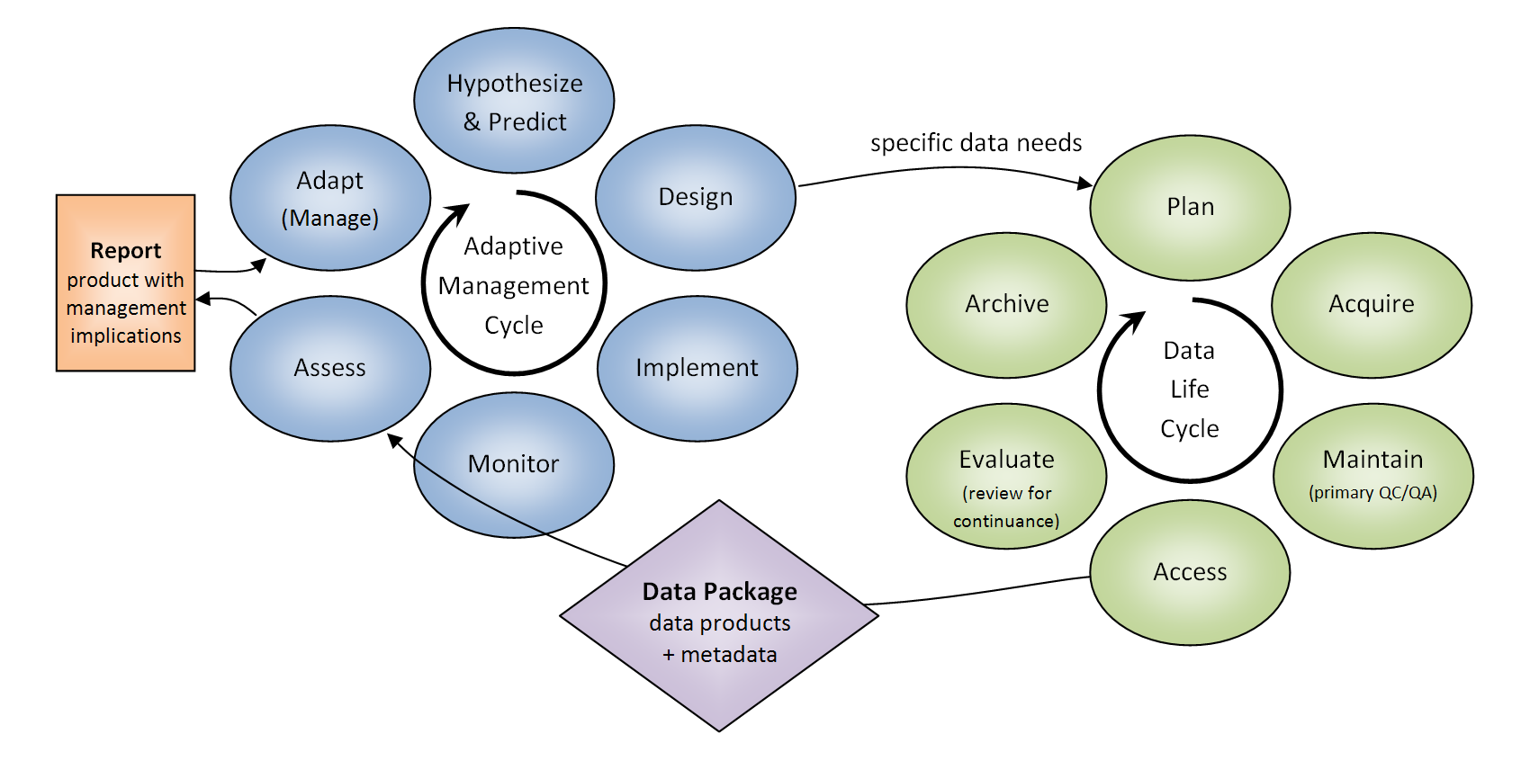 Data and Adaptive Management Cycles